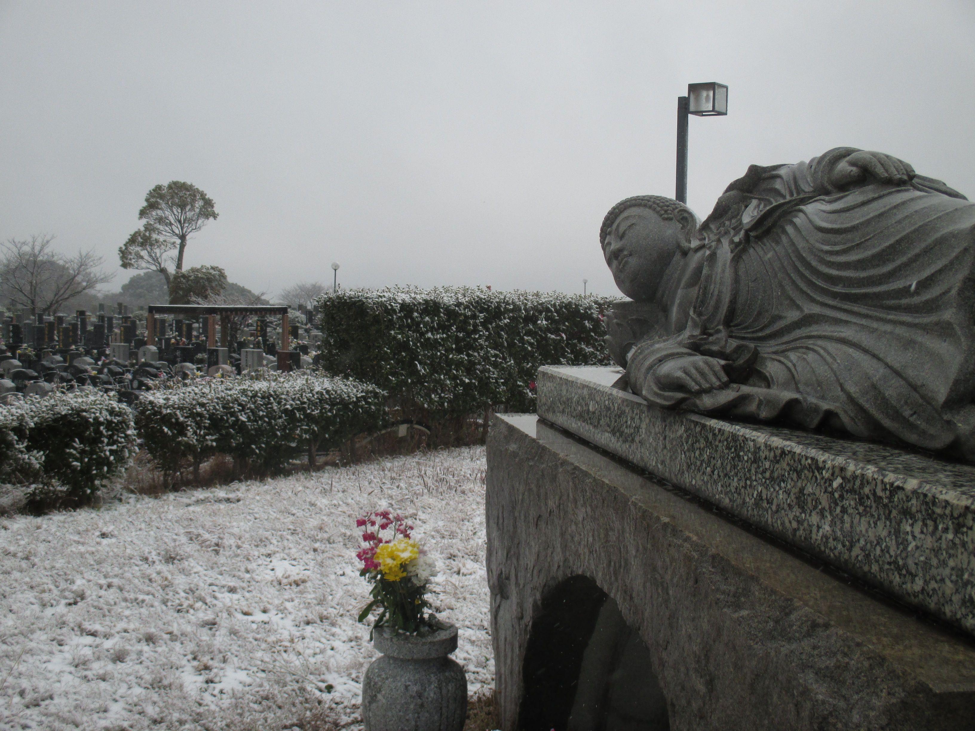 2019年初雪